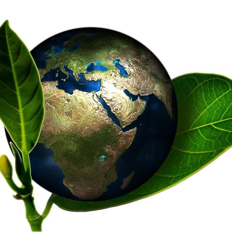 002-Calidad-y-medio-Ambiente-